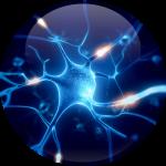 dynamical-neurofeedback-pornic-vitesse-connexions-nerveuses-du-cerveau